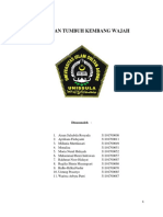 MAKALAH DRG SHELLA(1).docx