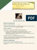 Boletín jurisprudencial n.º 7 - 2019