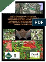 Informe Final Conectividad - San Lucas – San Marcos de La Sierra