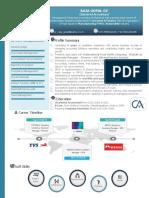 CA RAJA - Finance Professional