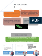microbiologia-exposicion.pptx