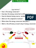 Chap 3Bioenergetics