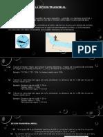 Método del colorante y la sección transversal (1).pptx