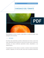 VIRUS MOSAICO DEL TOMATE.docx