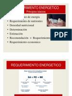 requerimiento-1a-aves-2018-i-modo-de-compatibilidad.pdf