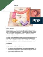 Perspectiva general.pdf
