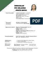 Curriculum wleidys Pinto pinto.docx