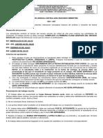Plan de Mejoramiento Lengua Castellana 2019 Elian Pedraza
