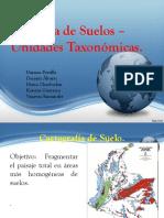 Mapa de Suelos _ Unidades Taxonómicas ArcGis