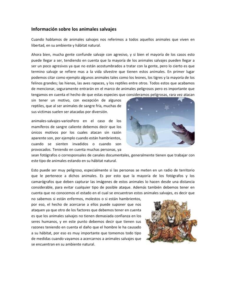 Informaci n sobre los animales salvajes for Informacion sobre los arquitectos