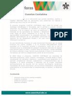cuentas_contables