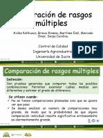 Comparación de rasgos múltiples.pptx