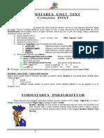 Aplicatie Cu Antet Comanda Font Si Paragraf Office 2010