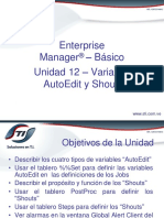CTMEM_12-Variables Autoedit y Shouts-cursoSTI7.00-12