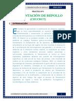 Informe-de-Chucrut.docx