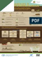 ES Web IYSinf Biodiversity