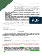 Tema 1. Niveles Anatomofuncionales de SNC (2).docx