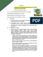 Practica 4 Dendrologia