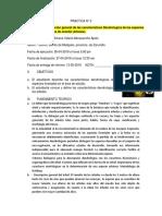 INFORME DE DENROLOGIA 2docx.docx