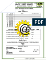 GUION RADIAL.docx