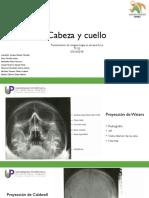 Cabeza Cuello- Anomalías 1