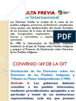 Consulta Previa.pptx