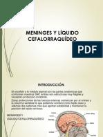 Meninges y Líquido Cefalorraquídeo
