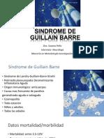 4 Sindrome DeGuillain Barre 15 m