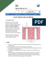 Chem Practical G8 Term IV 2018 Electrolysis of Brine (1)Valeria