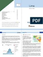 LIM-es.pdf