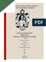 FISICA INFORME 8.pdf