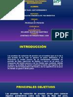 pruebas de presión(raul).pptx
