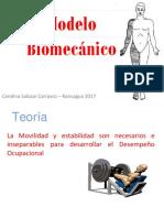 modelo biomecanico