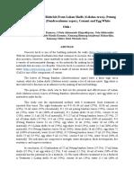 Comparison Test of Biobrick From Lokan Shells (Kelompok Jinong)