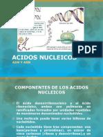 Presentación Ácidos nucleicos