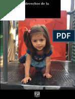 Indice Derechos Infancia Mexico 2018