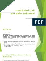 Responsabilidad Civil Por Daño Ambiental
