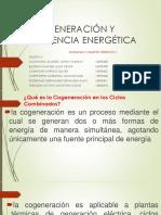 Cogeneración y Eficiencia Energética