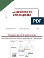 07. Oxidación Ácidos Grasos