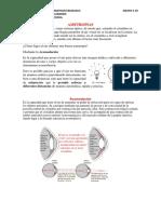 Word Oftalmologia Clase 4 (Ametropias)