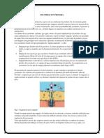 Trabajo de Geologia Del Petroleo y Gas