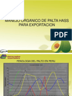 Manejo Agronomico de La Palta Organica - Apropalmo