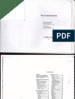 rebollo1.pdf