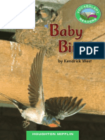 Baby Birds.pdf