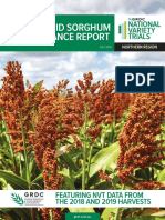 2019 NVT Hybrid Sorghum Performance Report