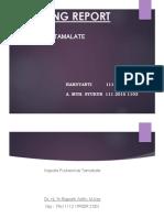 MR tamalate 23 februari.pptx