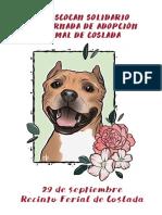 IV Mascocan Solidario  y VI Jornada de Adopción Animal / Coslada 2019
