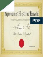amir 2.pdf