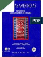lenguas indígenas de los llanos orientales.pdf