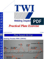 WIS Plate Exe Nv (TWI)